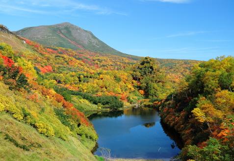 Japan National Park Autumn