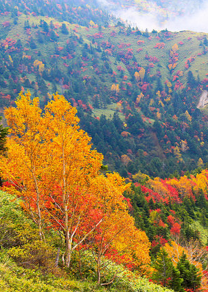 Nagano Autumn Japan