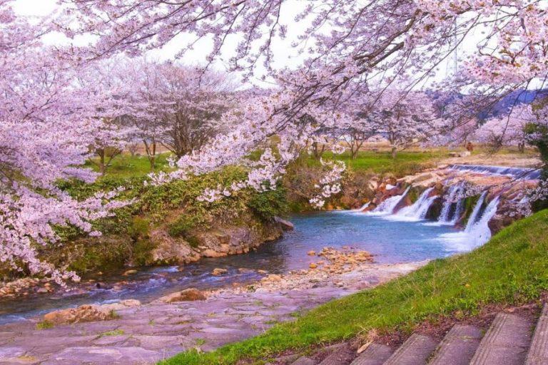 Spring In Hokuriku