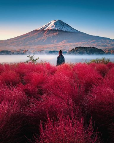 Fuji Five Lakes Autumn Trip