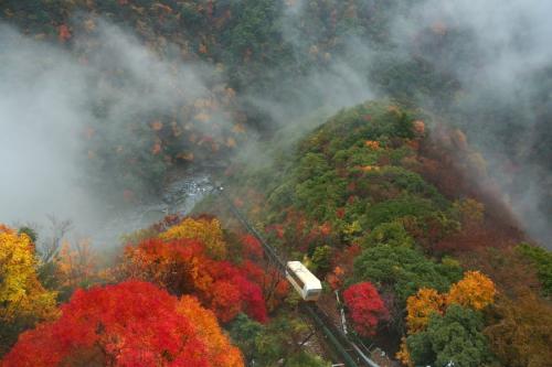 秋)紅葉とケーブルカー